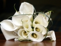 CZH-Wedding-Bridal-Bouquet-047.jpg