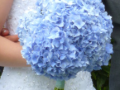 CZH-Wedding-Bridal-Bouquet-052.png